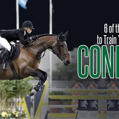 Train Your Horse