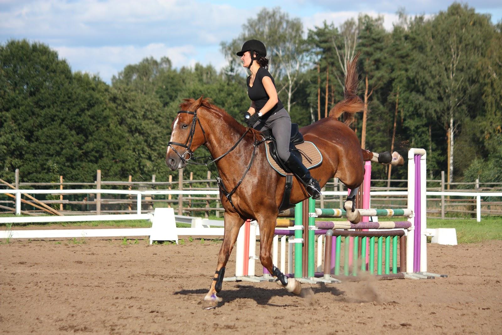 woman riding playful horse