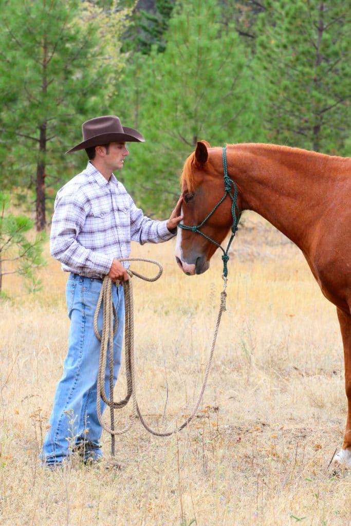 Cowboy comforting anxious nervous horses