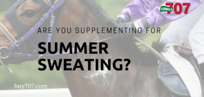 Supplementing for summer sweat buy707.com