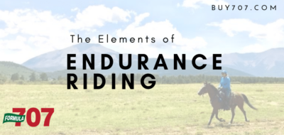 The Elements of Endurance Riding