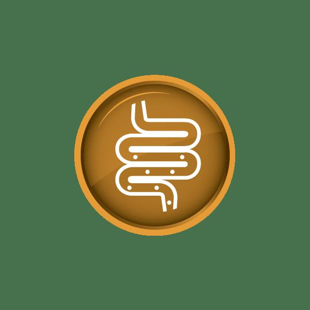 Digestive Health Icon