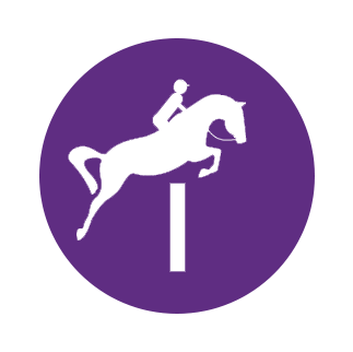 horse jumping icon