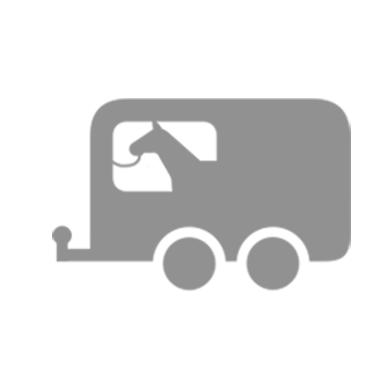 horse in trailer icon